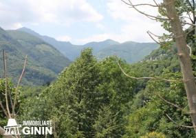 Rustico, Cannobio, Lago Maggiore, Garten, zu renovieren